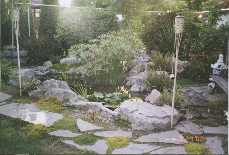 water feature and path installation