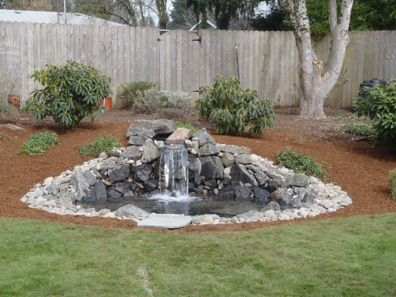 back yard install