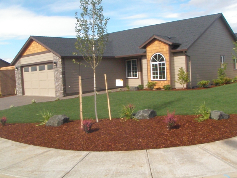 edging and lawn care