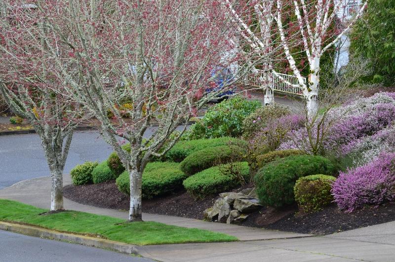 Portland lawn care 2