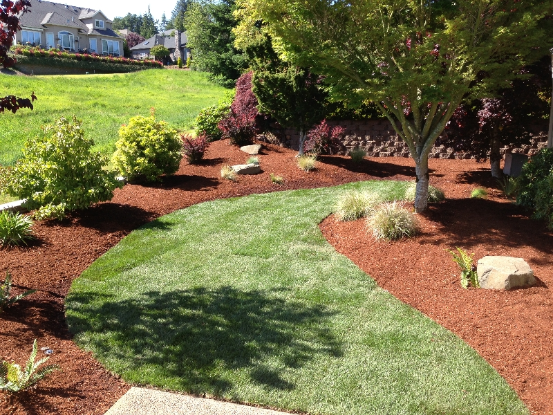 Albany lawn care